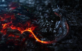 Picture fire, dragon, art, dragon