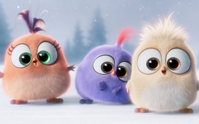 Picture cinema, animation, game, blizzard, design, bird, young, eyes, wings, beautiful, feathers, snow, movie, film, yuki, ...