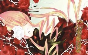 Picture sleep, spikes, rozen maiden, art, red roses, shinku, Kapor, peach-pin