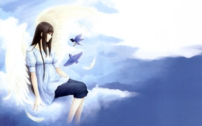 Picture girl, clouds, birds, tenderness, clouds, Kara no shoujo