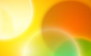 Picture light, lemon, orange, round, arc, kiwi, ring, slice
