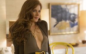 Picture Amy Adams, American Hustle, American hustle, Sydney Prosser