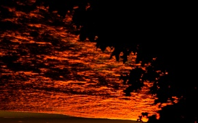 Picture Clouds, Sky, Tree, Sunset, Autumn, View, Leaves, Gloomy