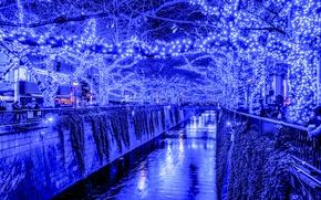 Wallpaper lights, holiday, the evening, Japan, Tokyo