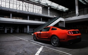Picture Mustang, Ford, Muscle, Boss 302, Orange, Car, Shooting, Photo, Rear