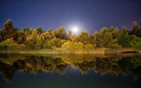 Picture stars, reflection, mirror, moonlight, trees lake