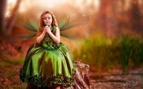 Picture dandelion, wings, dress, girl
