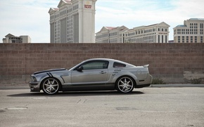 Picture mustang, silver, gtr