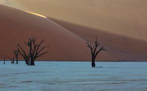 Picture desert, africa, dunes, Deadvlei, namibia