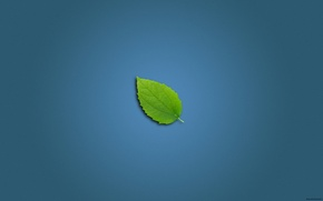 Wallpaper blue, sheet, green, background, blue, minimalism, leaf wall