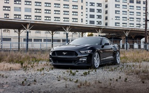 Picture Mustang, Ford, Black, 5.0, 2015