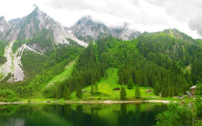 Picture forest, mountains, lake, Austria, lake Gosausee