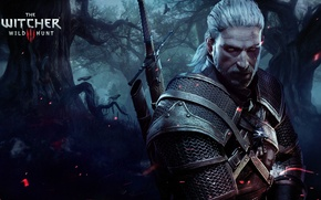 Picture The Witcher, Geralt, Witcher