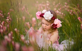 Picture flowers, mood, meadow, girl, wreath