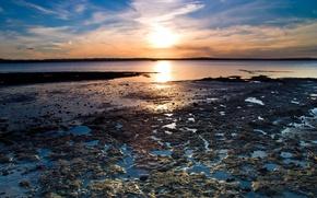 Picture water, shore, The sun