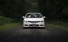 Picture road, forest, glass, reflection, lights, mirror, Honda, front, Civic