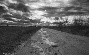 Picture forest, the sky, clouds, clouds, Road, Puddle