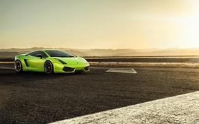 Picture sunset, green, black, gallardo, lamborghini, Lamborghini, wing, lp560-4, greed, Gallardo