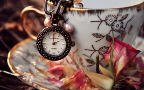 Picture flower, leaves, pink, watch, petals, dry, Cup, saucer, suspension