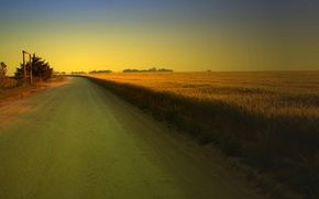 Picture road, greens, field, trees, landscape, nature, background, tree, widescreen, Wallpaper, vegetation, track, wallpaper, path, widescreen, ...