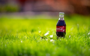 Picture grass, macro, nature, bottle, spring, drink, Coca-Cola, Coca-Cola, bottle
