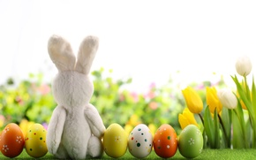 Picture flowers, eggs, spring, Happy, flowers, rabbit, tulips, tulips, Easter, eggs, Easter, decoration, spring