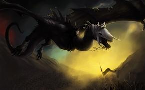 Picture flight, fiction, dragon, skull, wings, art, chain