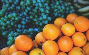 Wallpaper fruit, grapes, oranges