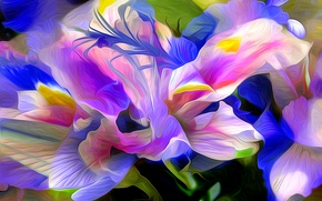 Picture flower, nature, abstraction, plant, petals