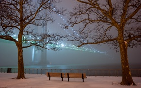 Wallpaper Park, bridge, snow, fog, trees, lights, benches, the evening