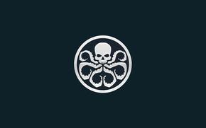 Picture sake, logo, symbol, Marvel comic, tentacles, Hail Hydra