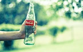 Picture summer, water, freshness, mood, bottle, heat, hand, hands, bottle, drink, drinks, coca-cola, Coca-Cola, cola, Cola, …
