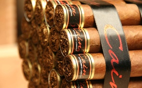 Picture cigars, packaging, tobacco