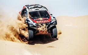 Picture 2008, Peugeot, Peugeot, Dakar, DKR, Baggy
