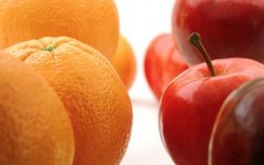 Picture macro, apples, oranges