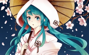 Picture girl, flowers, umbrella, petals, Sakura, art, hood, leaf, vocaloid, hatsune miku, yuki miku, izaro