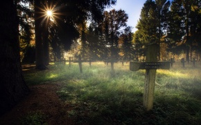 Picture light, cross, morning, cemetery
