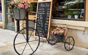 Picture flowers, bike, the city, window, pink, stand, pot, showcase