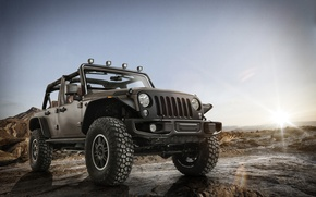 Picture Stealth, Wrangler, Jeep, 2014, Unlimited Rubicon