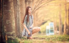 Picture legs, bokeh, Taiwan, Ning, Fall Day