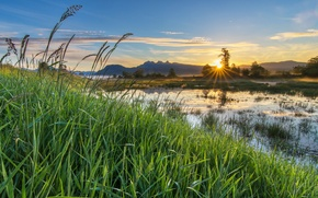 Picture grass, mountains, nature, river, morning