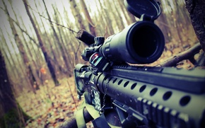 Picture autumn, forest, sniper, sight, rifle, airsoft, airsoft, m16spr
