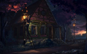 Picture house, fireflies, street, people, Night, lights, ladder, porch