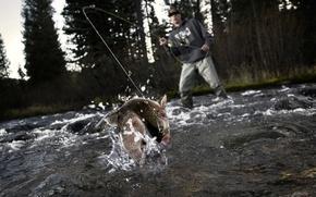 Picture good luck, fishing, splash, fish, fisherman, cutting