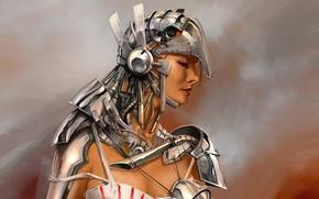 Picture girl, metal, figure, costume