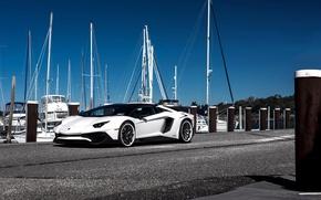 Picture Lamborghini, Avendator, SV, Yacht