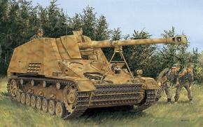 Picture figure, installation, self-propelled, artillery, German, (SAU), Nashorn, The second world voinea, 8.8 cm PaK 43/1 …