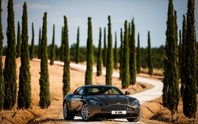 Wallpaper DB11, Aston Martin, road, trees, handsome, supercar, machine, auto, the sky, cypress