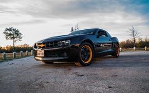 Picture Chevrolet, Camaro, Orange, Black, Texas, Wheels