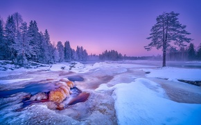 Picture winter, snow, trees, river, Finland, Finland, Kiiminki River River, river Kiiminkijoki